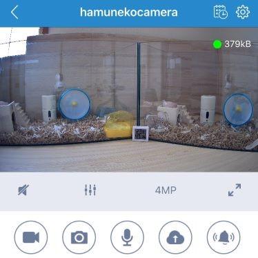 見守りカメラアプリ